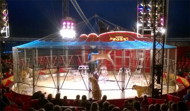 Probst Zirkus